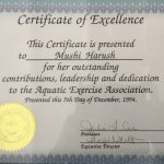 Certificare of Excellence